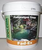 Holzum Fadenalgen Stopp 1000 ml / 1,4 kg